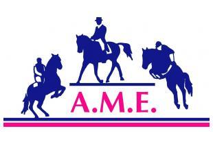 logo Meriggio Equitazione
