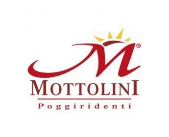 logo Bresaola Mottolini